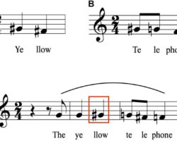 The Brain Break Down Speech , The Loudness Of Vowels Helps Into Syl-La-Bles